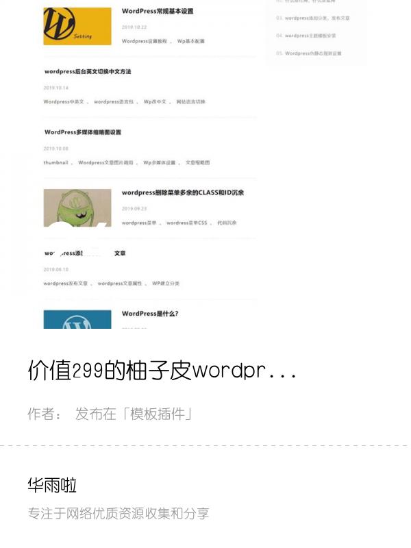 价值299的柚子皮wordpres主题